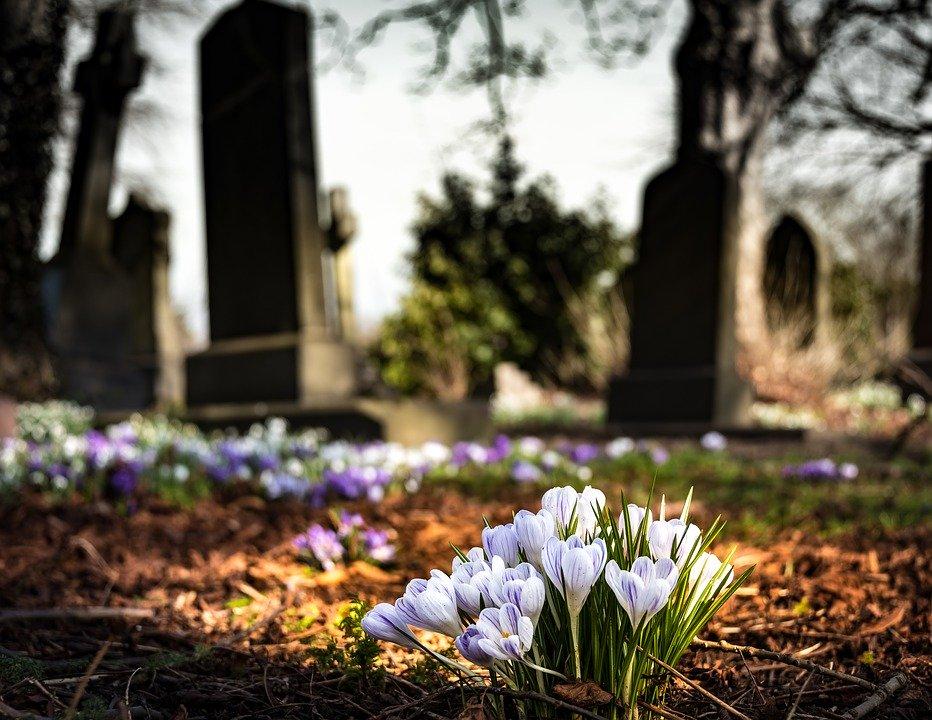 遺骨の処分方法はどう対処すべき?散骨や墓じまいでの対応を解説!のサムネイル画像