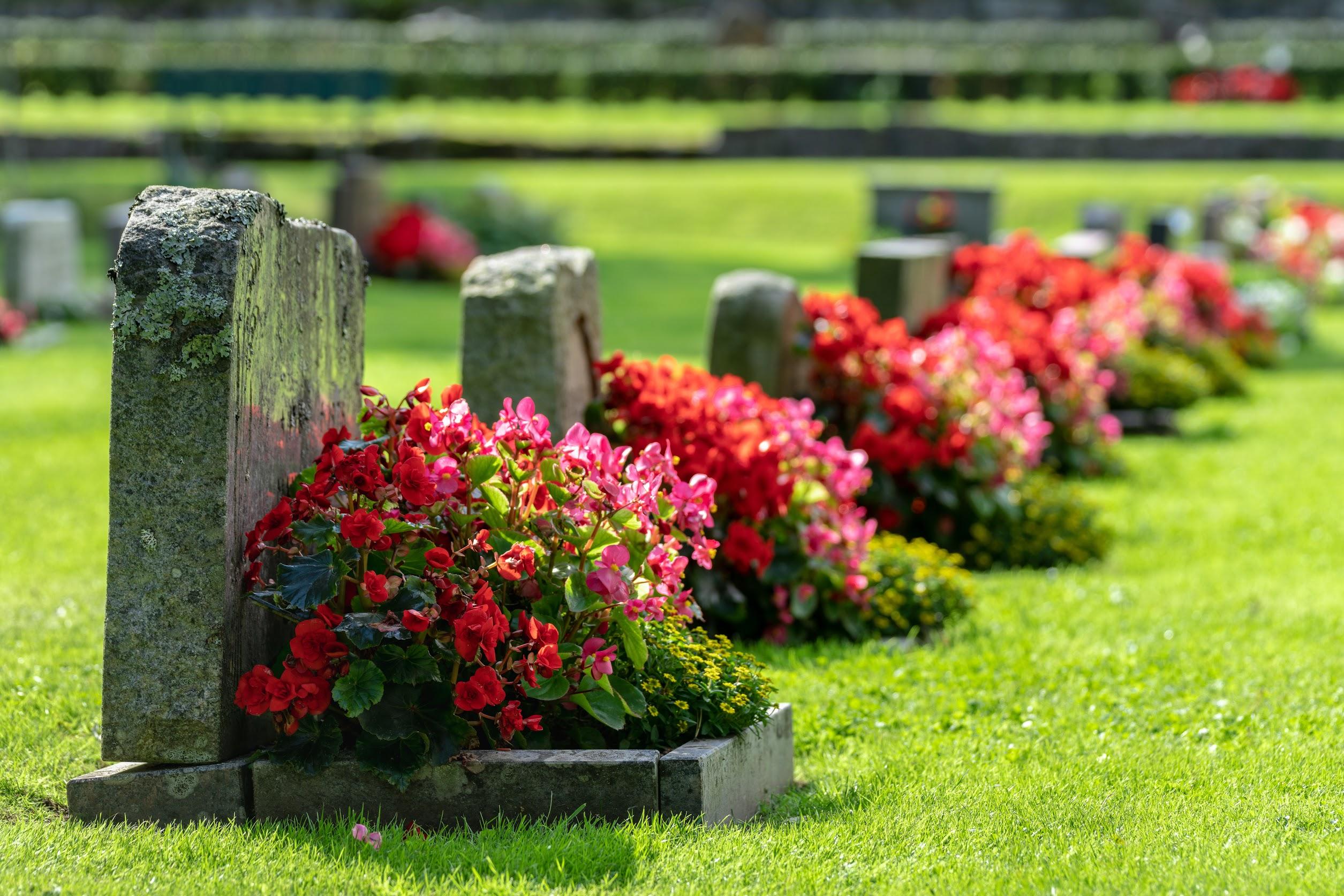 韓国のお墓事情はどのようなもの?日本とは大きく違うの?詳しく解説のサムネイル画像