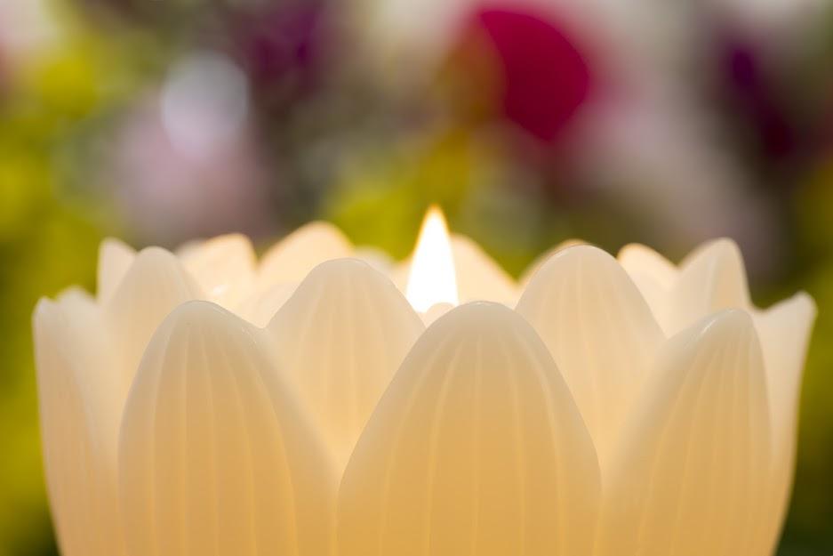 古川薫さんの葬儀|「漂泊者のアリア」直木賞作家が最後の別れのサムネイル画像