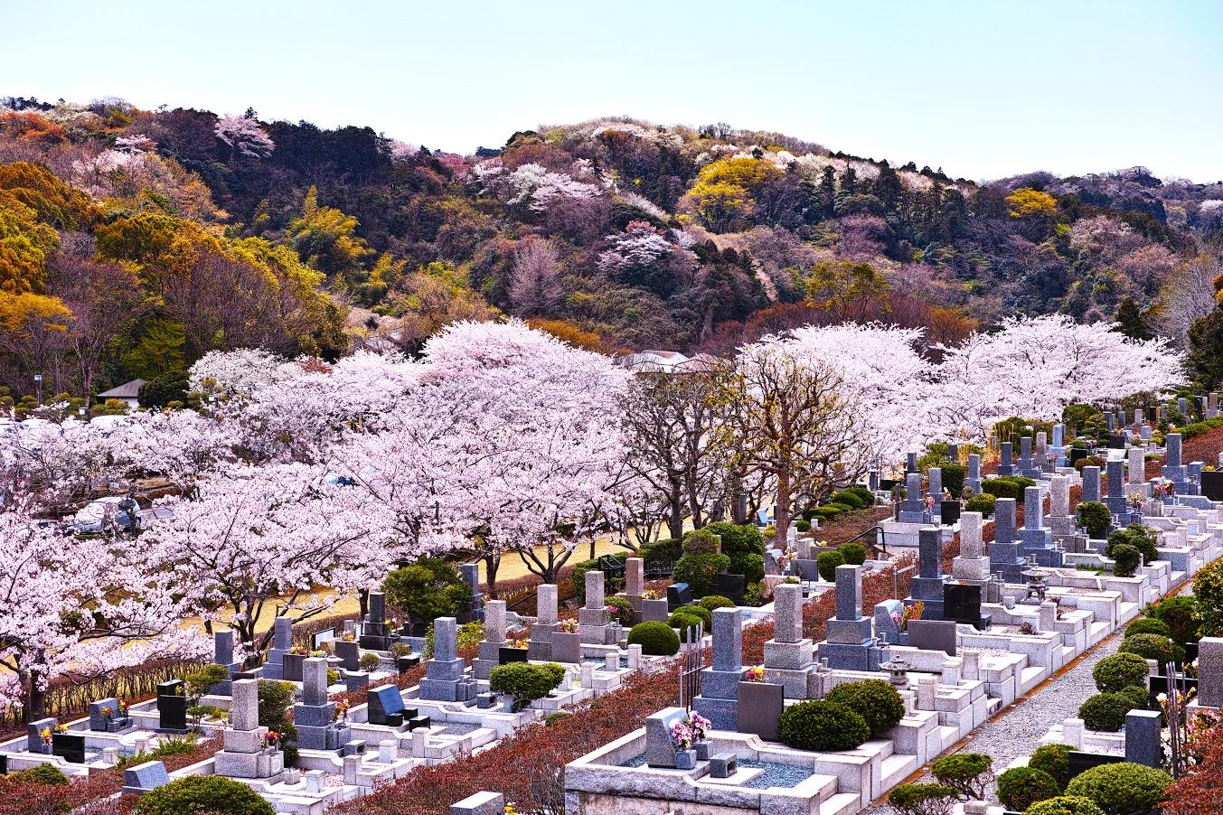 静岡県静岡市のおすすめの墓地霊園ランキング10選!選び方も解説のサムネイル画像