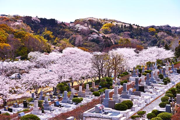 群馬県前橋市のおすすめ墓地霊園ランキング10選!のサムネイル画像